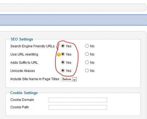 seo setting-anytech