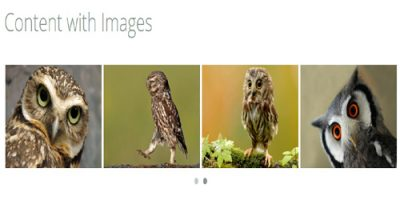 content-with-image-owl-carousel-slider